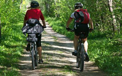Ideale Trainingseffekte auf dem E-Bike – was sagt die Sportwissenschaft?