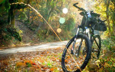 Essen und Trinken, um den E-Bike-Trainingseffekt zu unterstützen
