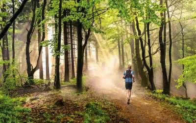 Trailrunning: Spaß vs. Risiko