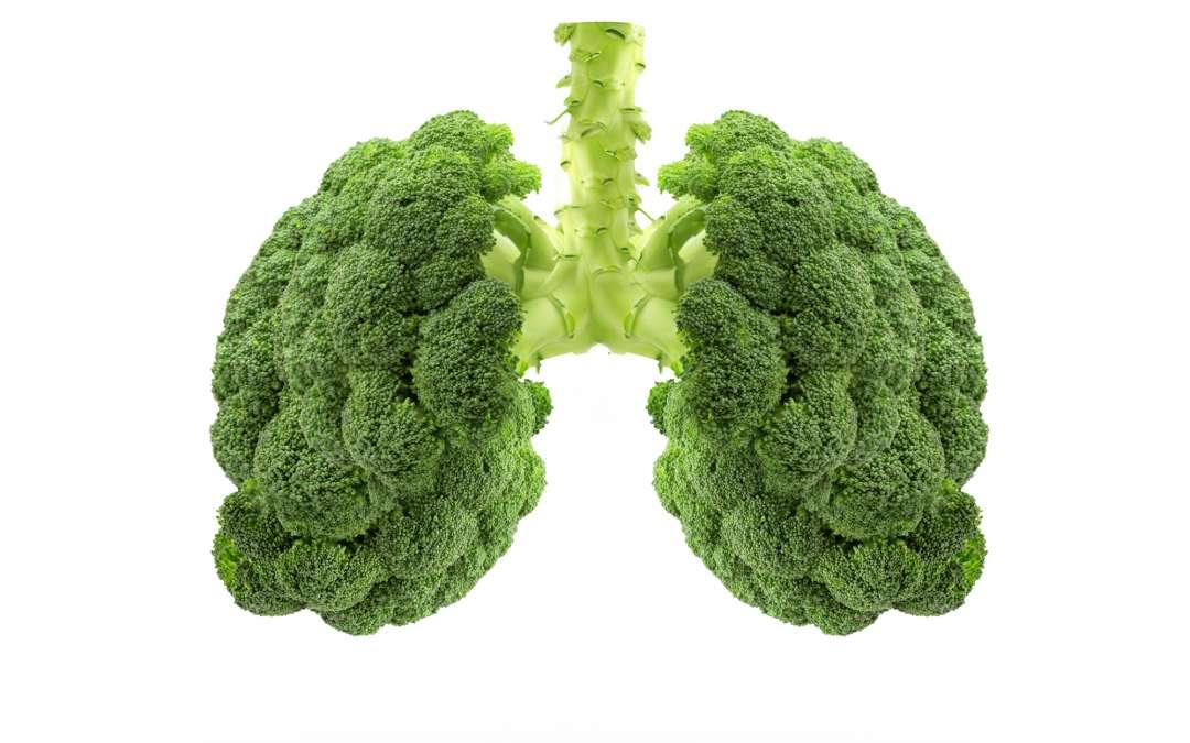 Lungen- und immunstärkende Ernährung